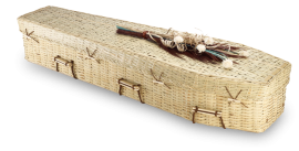 Bamboo Eco